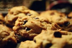 Basic Chocolate Chip Cookie